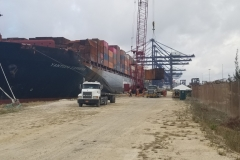 Container damage surveys