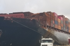 Container/cargo damage surveys
